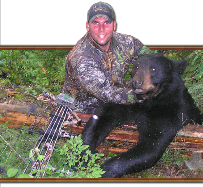 Black bear hunt details ontario resources